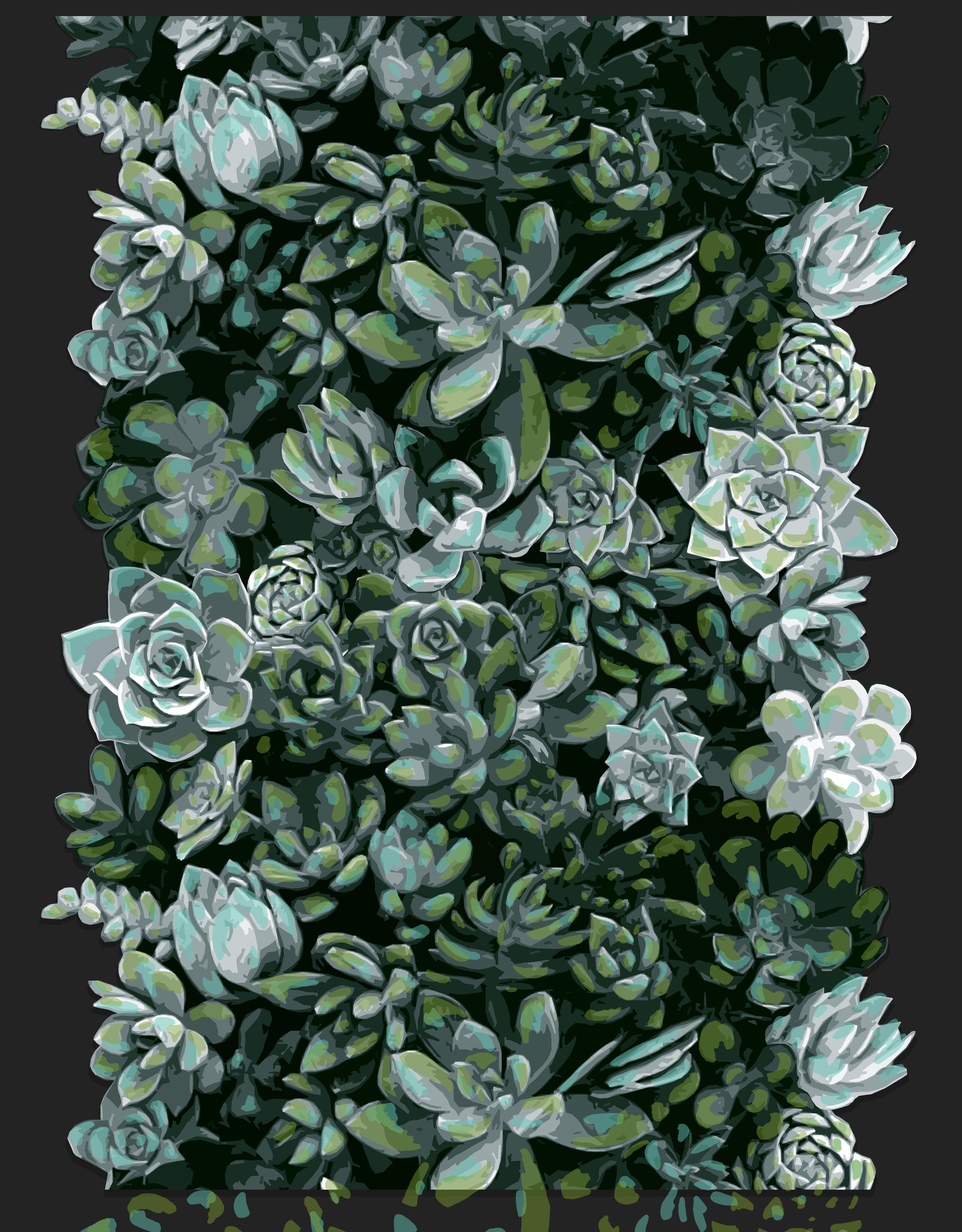 Succulents Wallpaper Noel Ashby