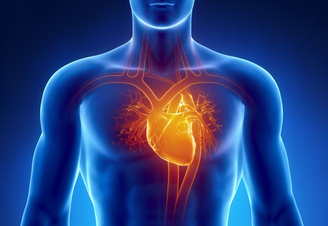 Can Stem Cell Therapy treat heart failure?