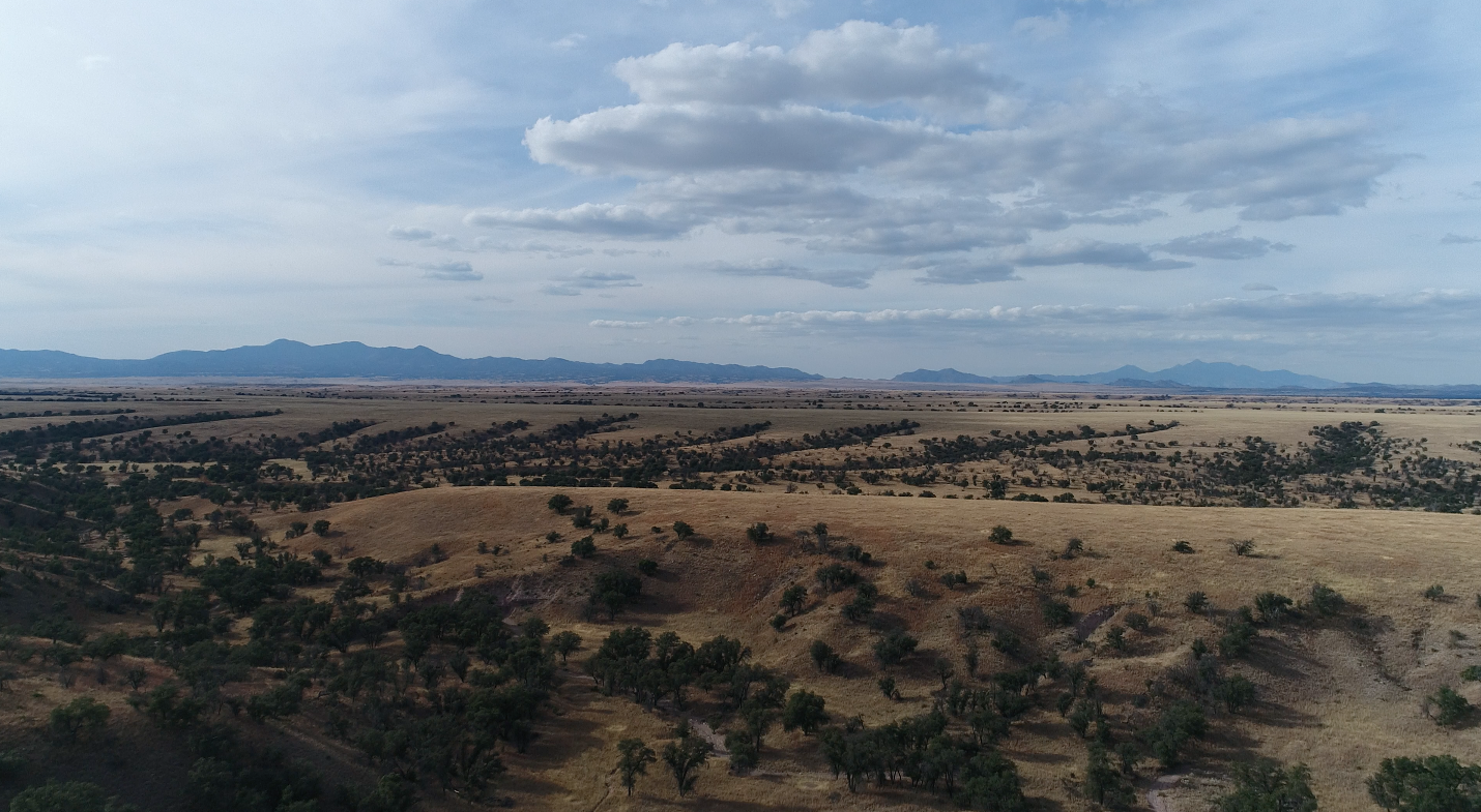 High above the vast San Rafael Valley in the Borderlands of Arizona