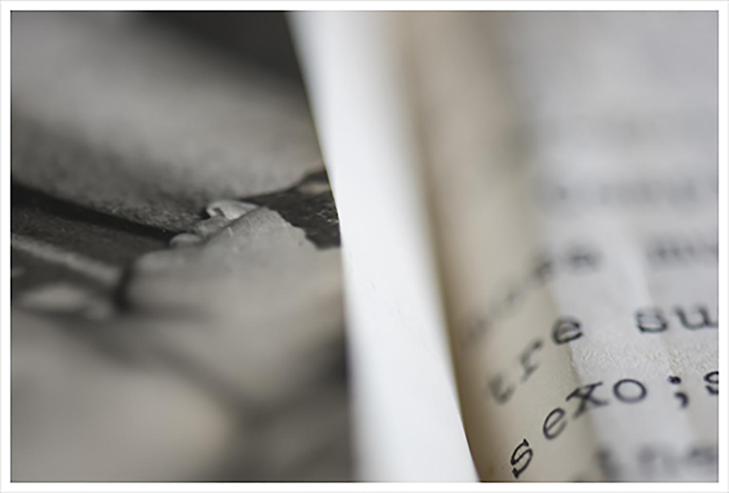 web rod 24.jpg