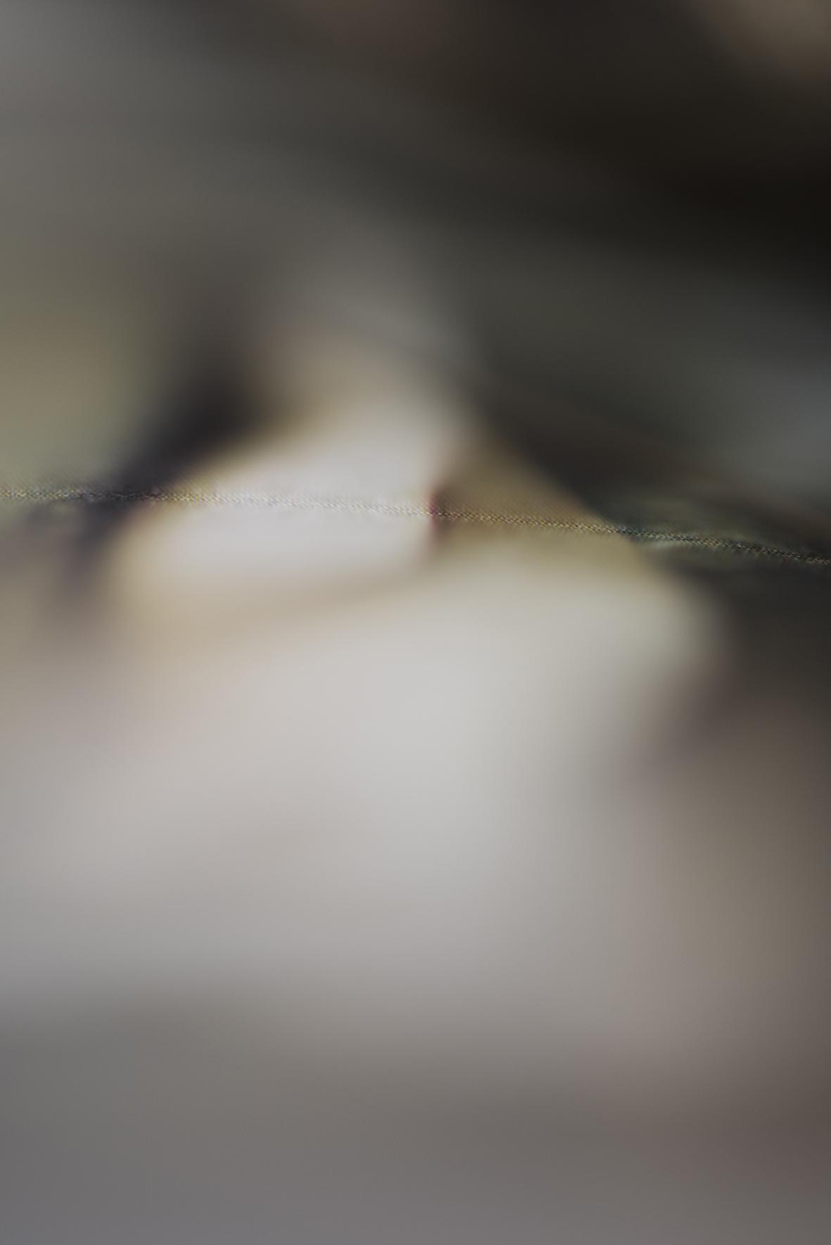 gaze 14.jpg