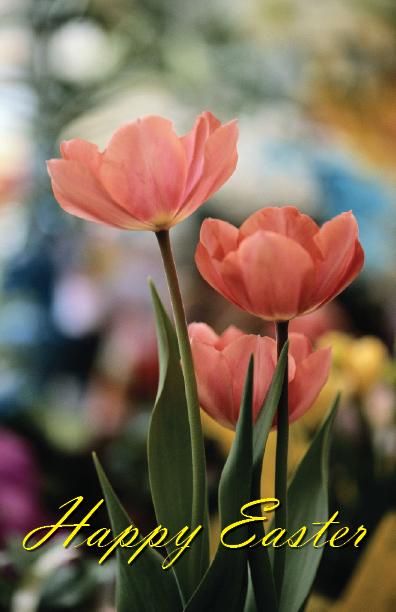 Easter Card cover.jpg