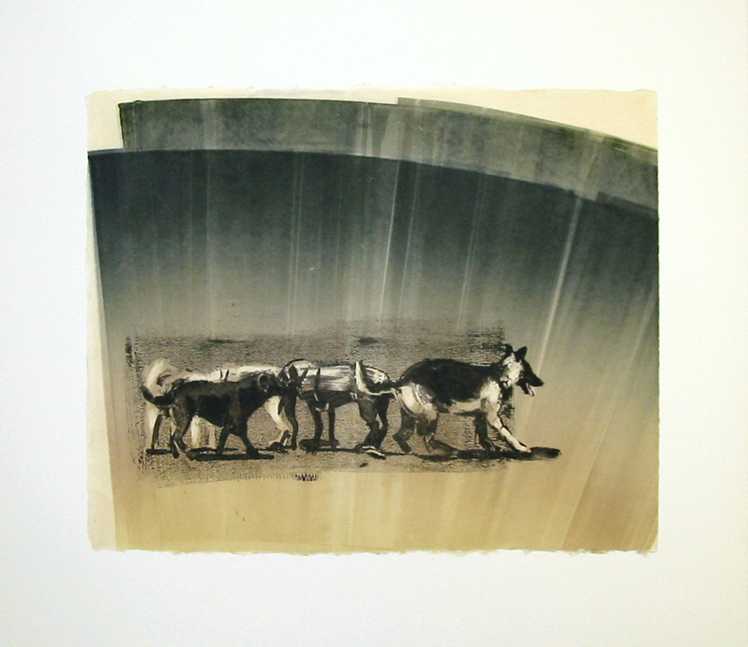 """""""Pack"""" by Joel Janowitz 2005"""