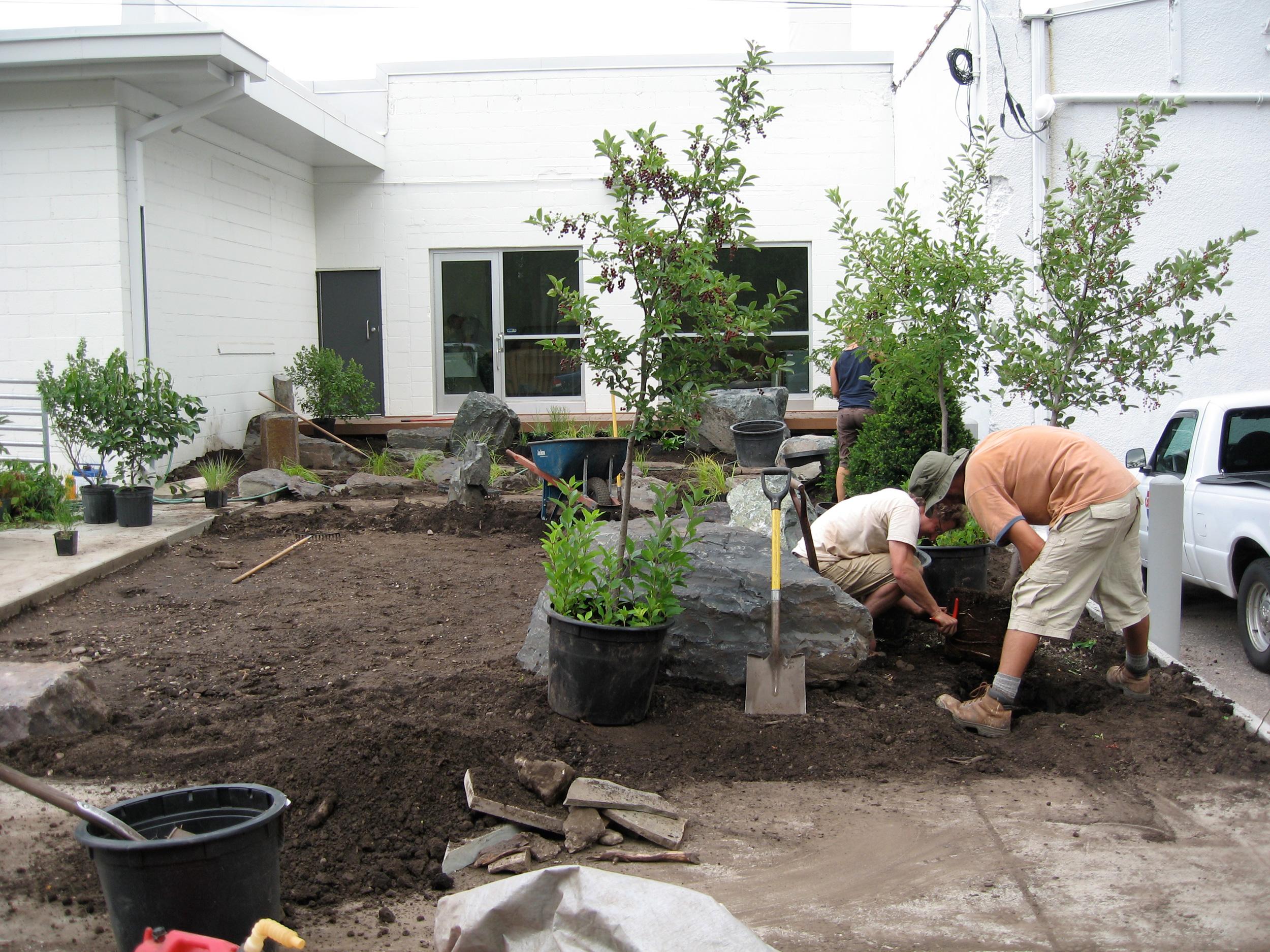 Rain Garden construction