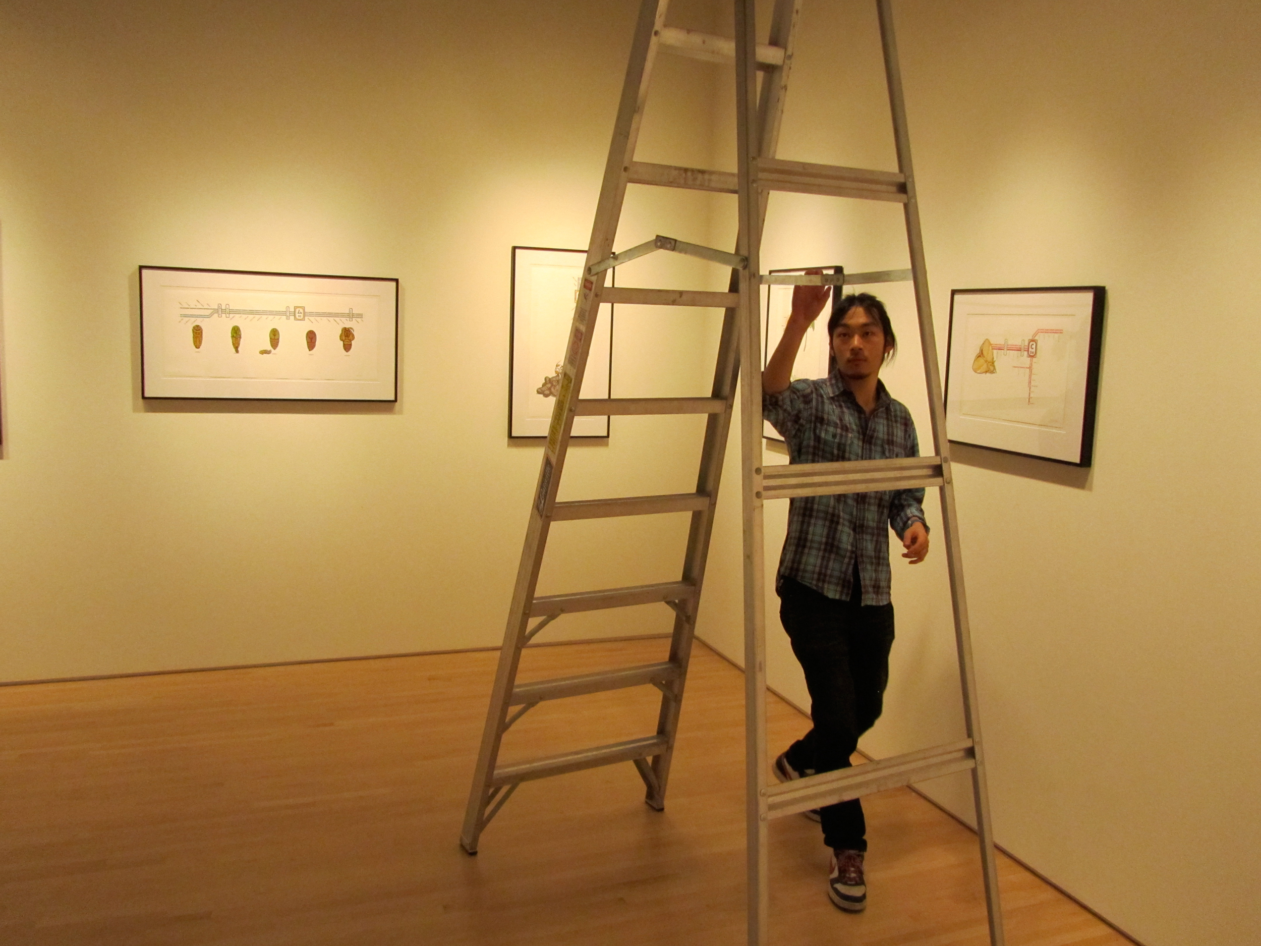 installation-of-the-2010-2011-jerome-emerging-printmakers-exhibition_5734181121_o.jpg