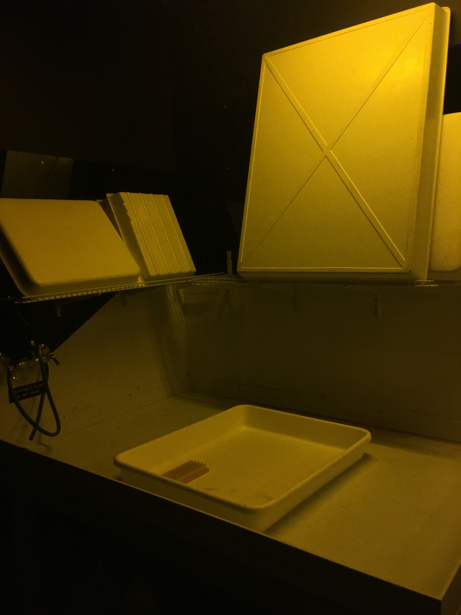 Developing sink and trays