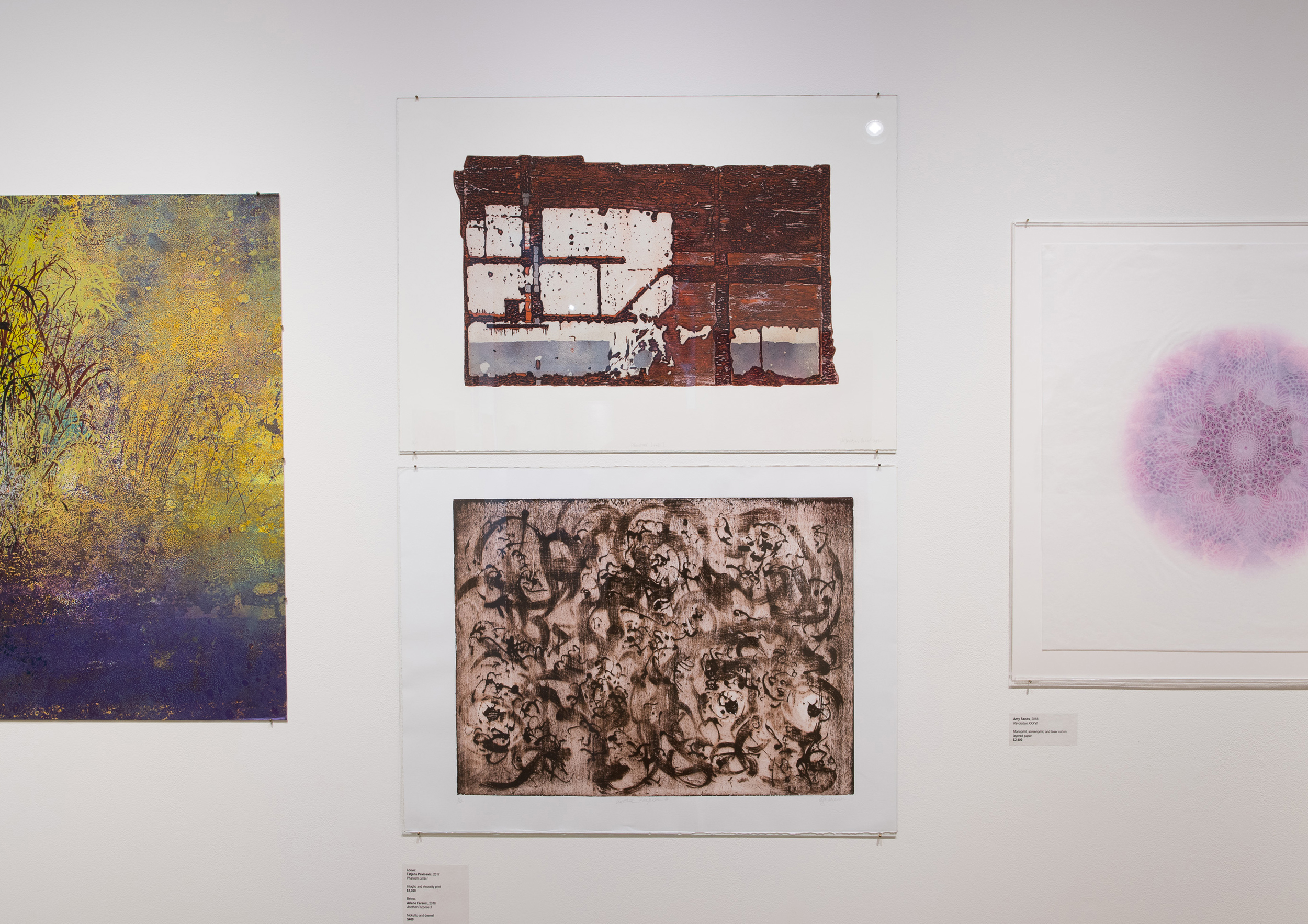 Highpoint PrintmakingStand Out Prints Exhibit180927a0456.JPG