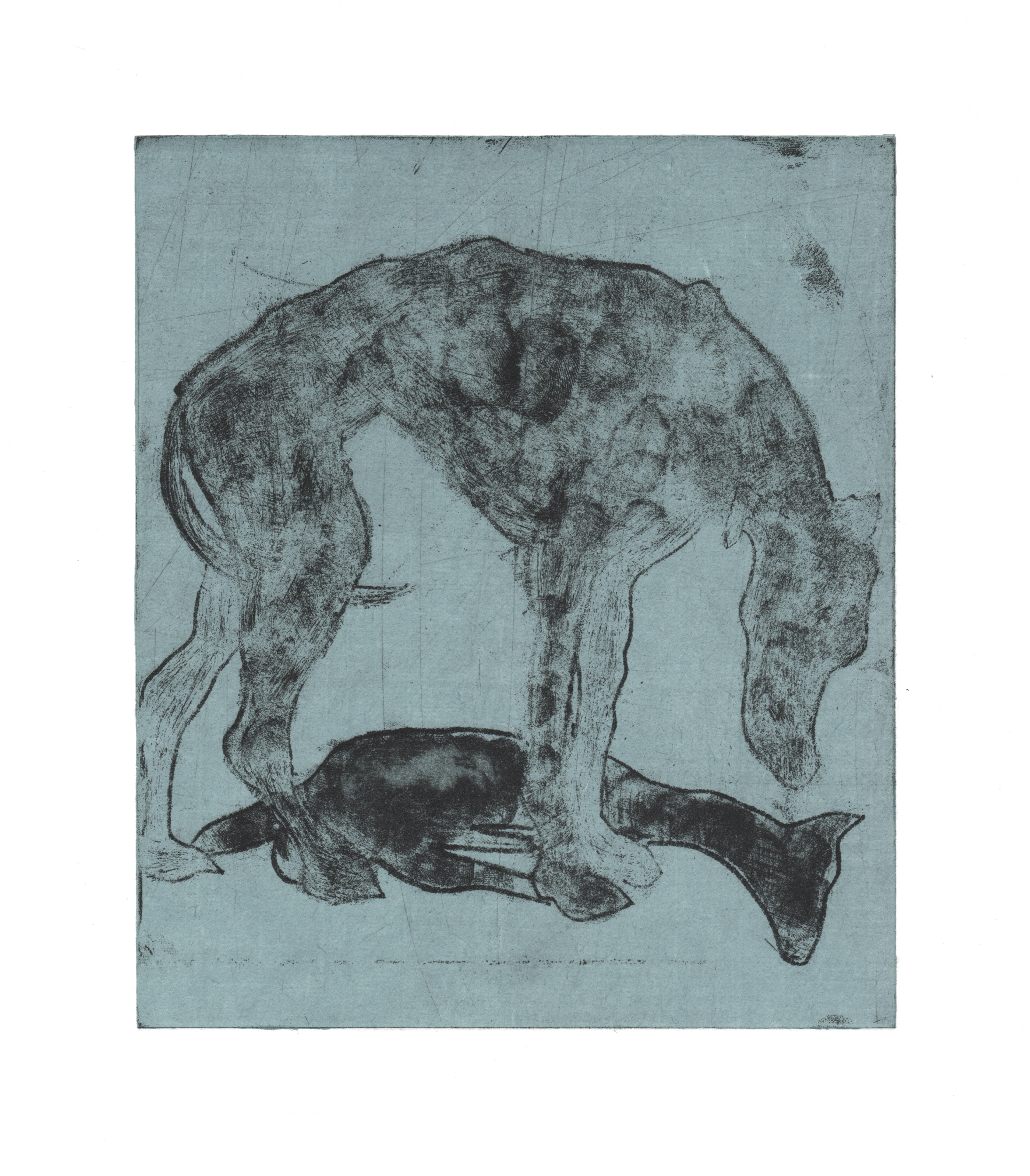 Zach Cramer, Another Fool's Dog, intaglio
