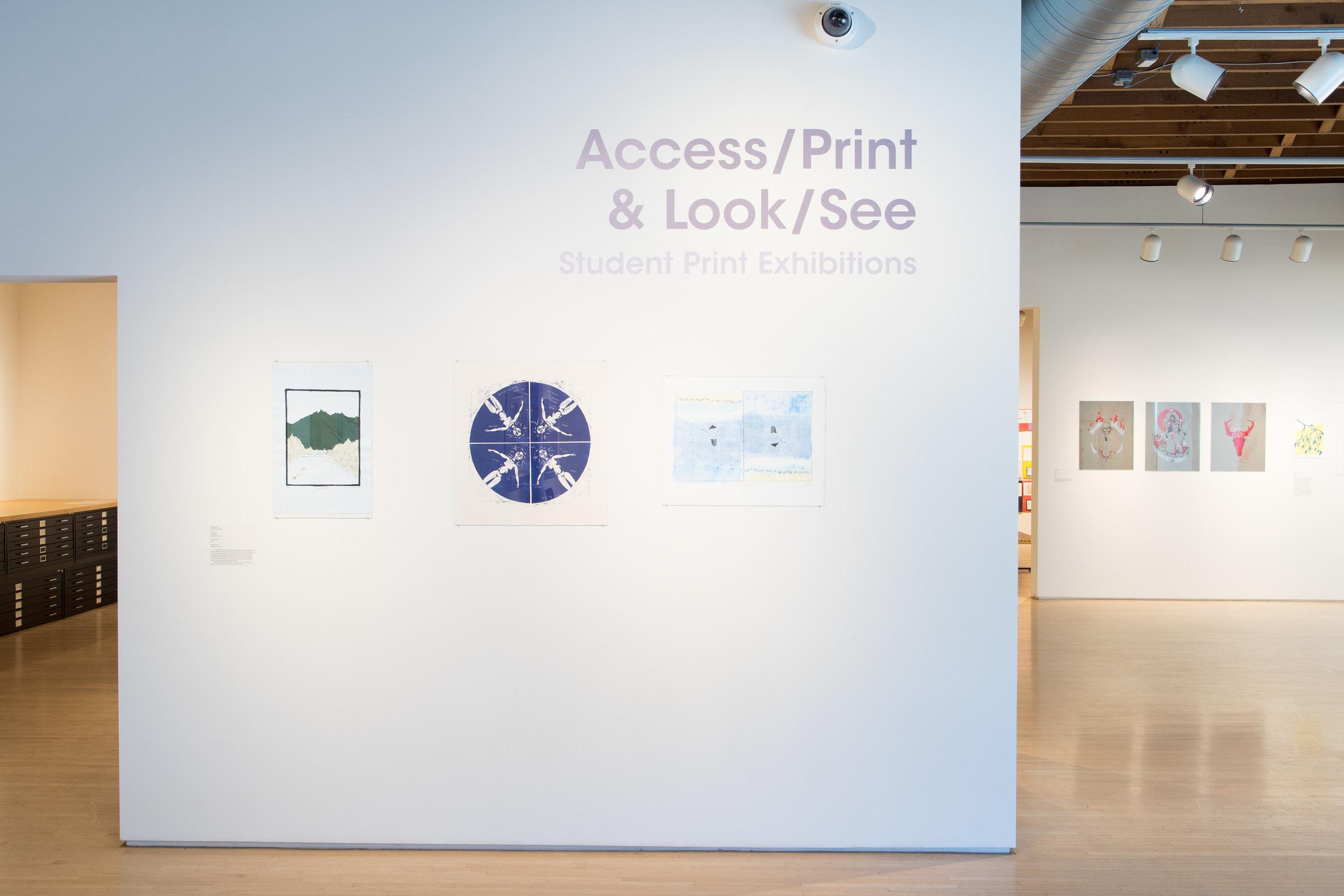 Access/Print2018/2019 Teen Program ExhibitionApril 12 - May 11, 2019Highpoint Printmaking190426a0004.JPG