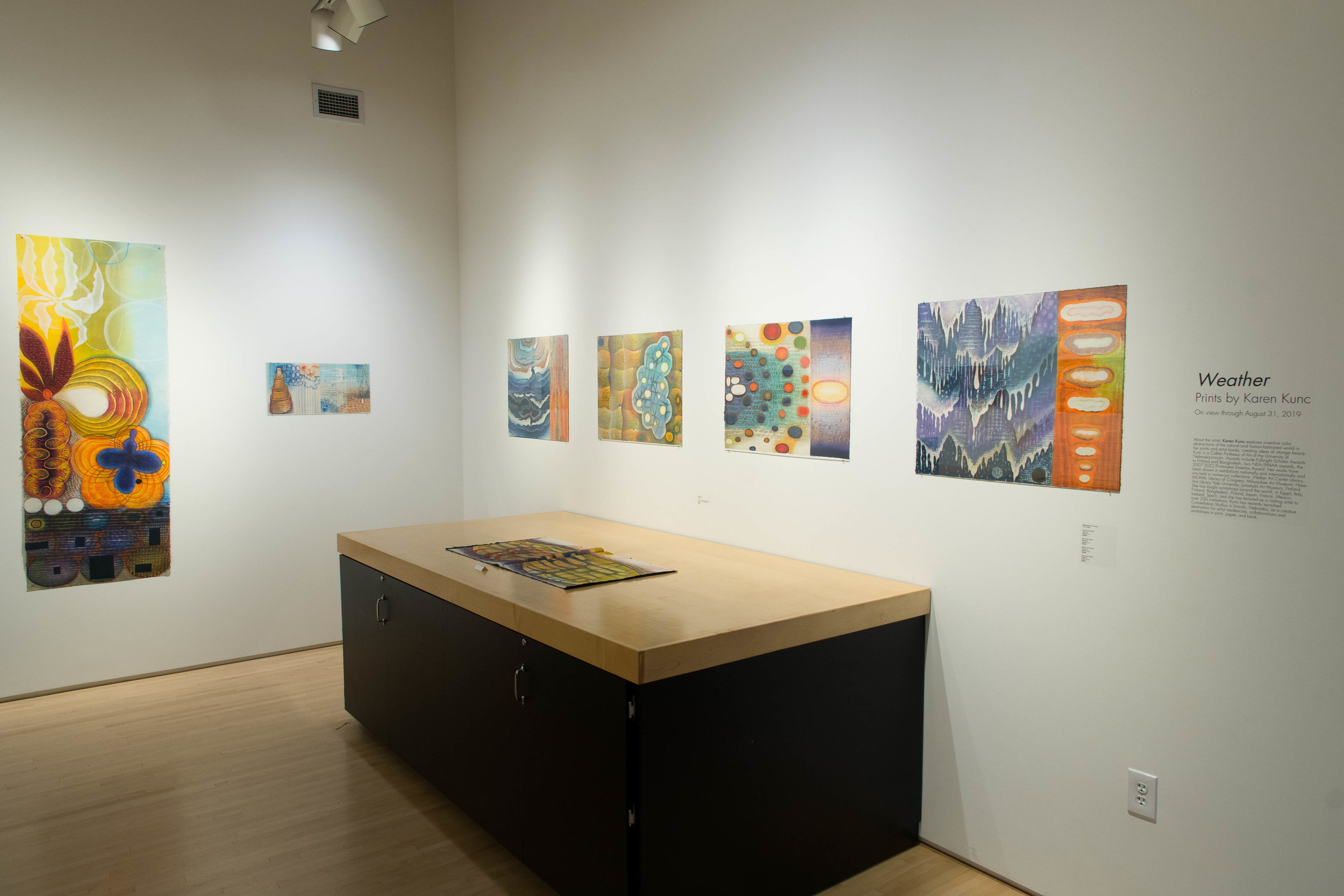 Highpoint ExhibitWeather by Karen Kunc190815a0040.JPG