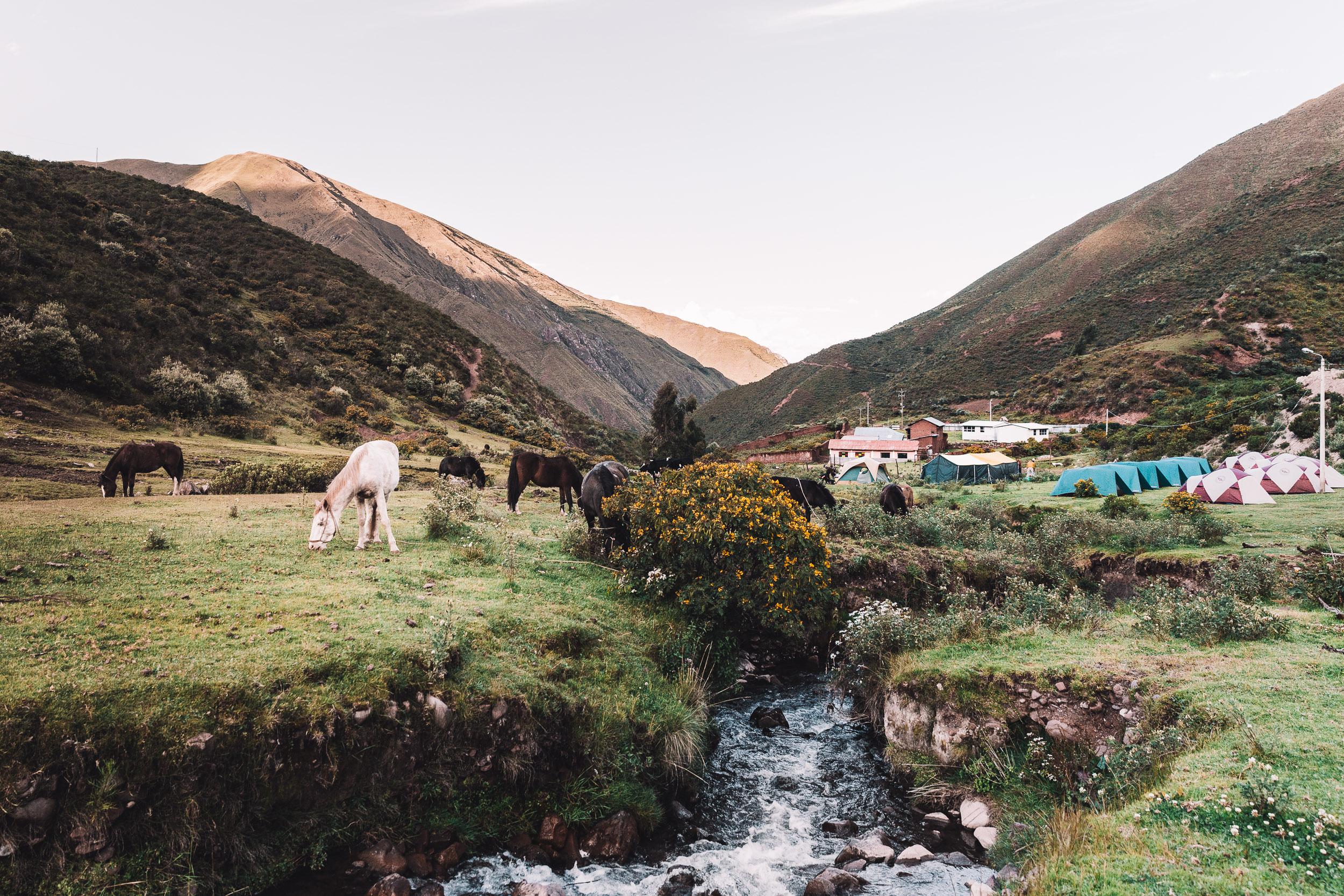 Campsite at Chilipagua on Trek to Machu Pichhu