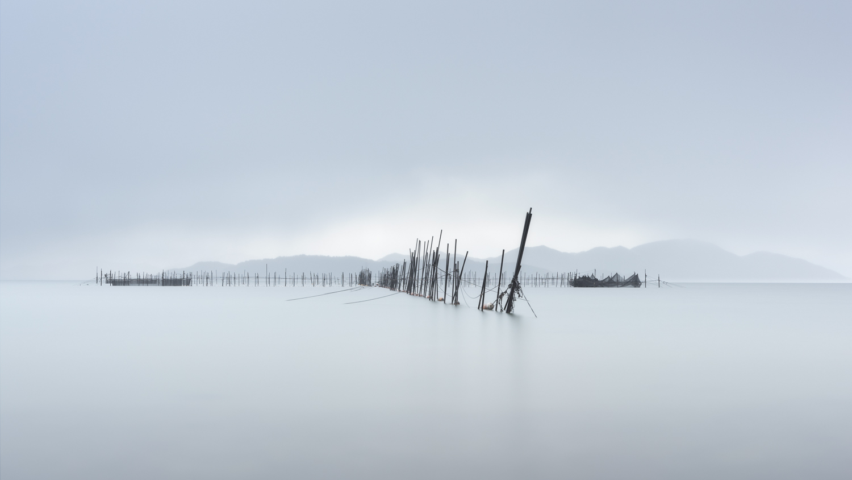 Lake Biwa Nets II