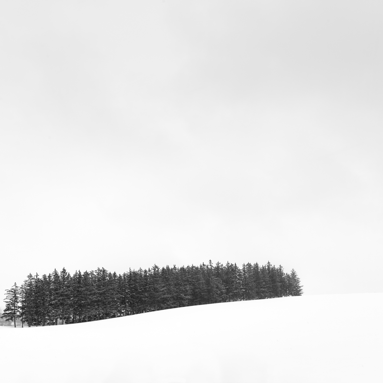 TorontoWinter-2254-Edit.jpg