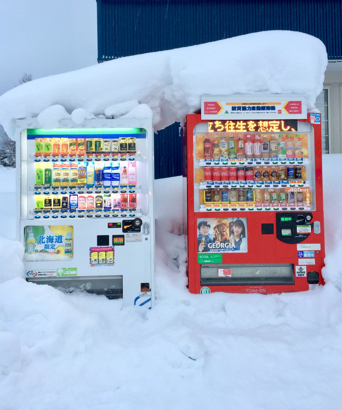 More vending machines in the snow. These look like they're sheltering together.  (photo: Ulana Switucha)