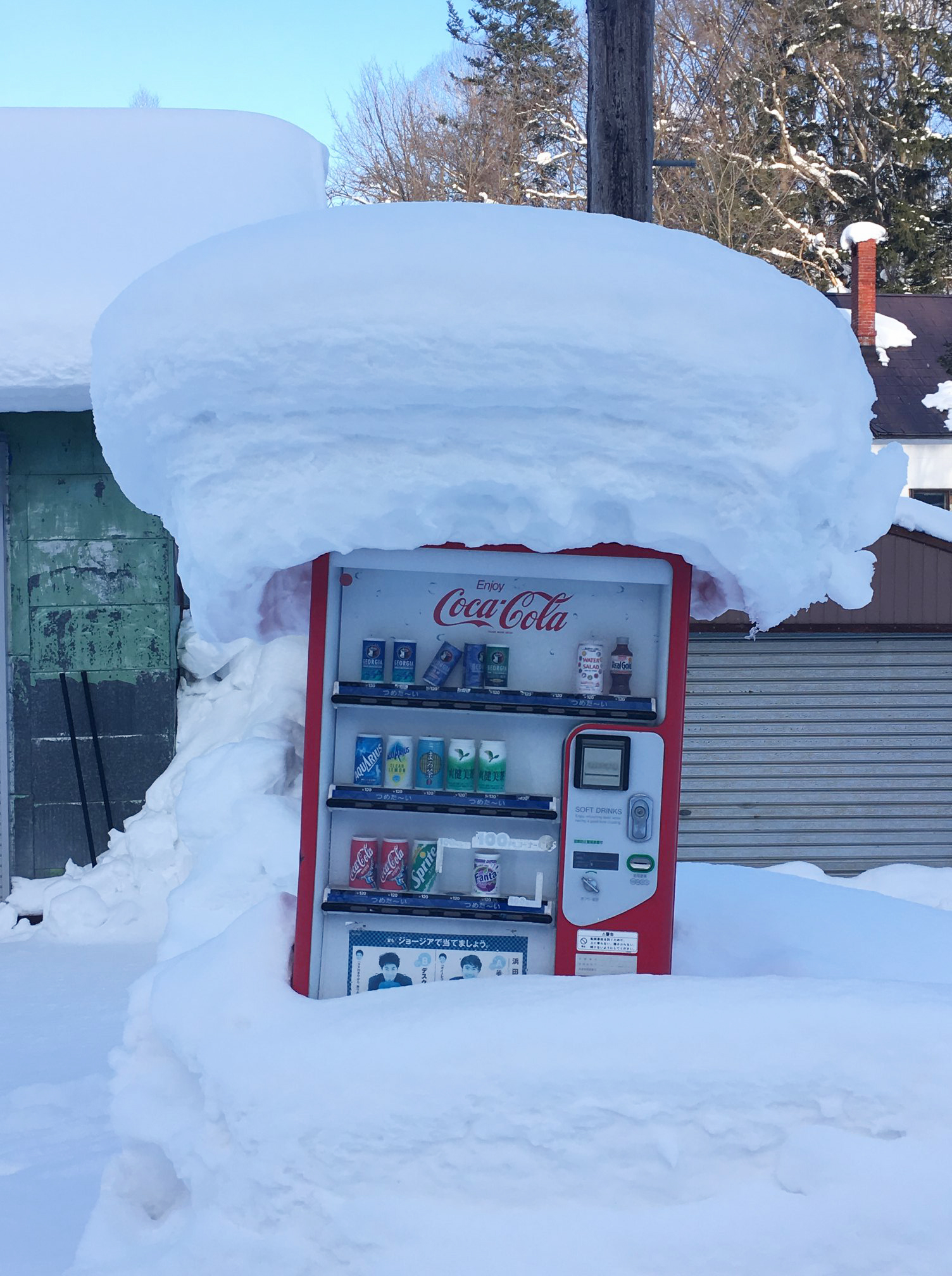 Japan has the highest density of vending machines in the world (1 machine for every 23 people). I loved the outdoor machines we found in Hokkaido, many of them piled up with snow.