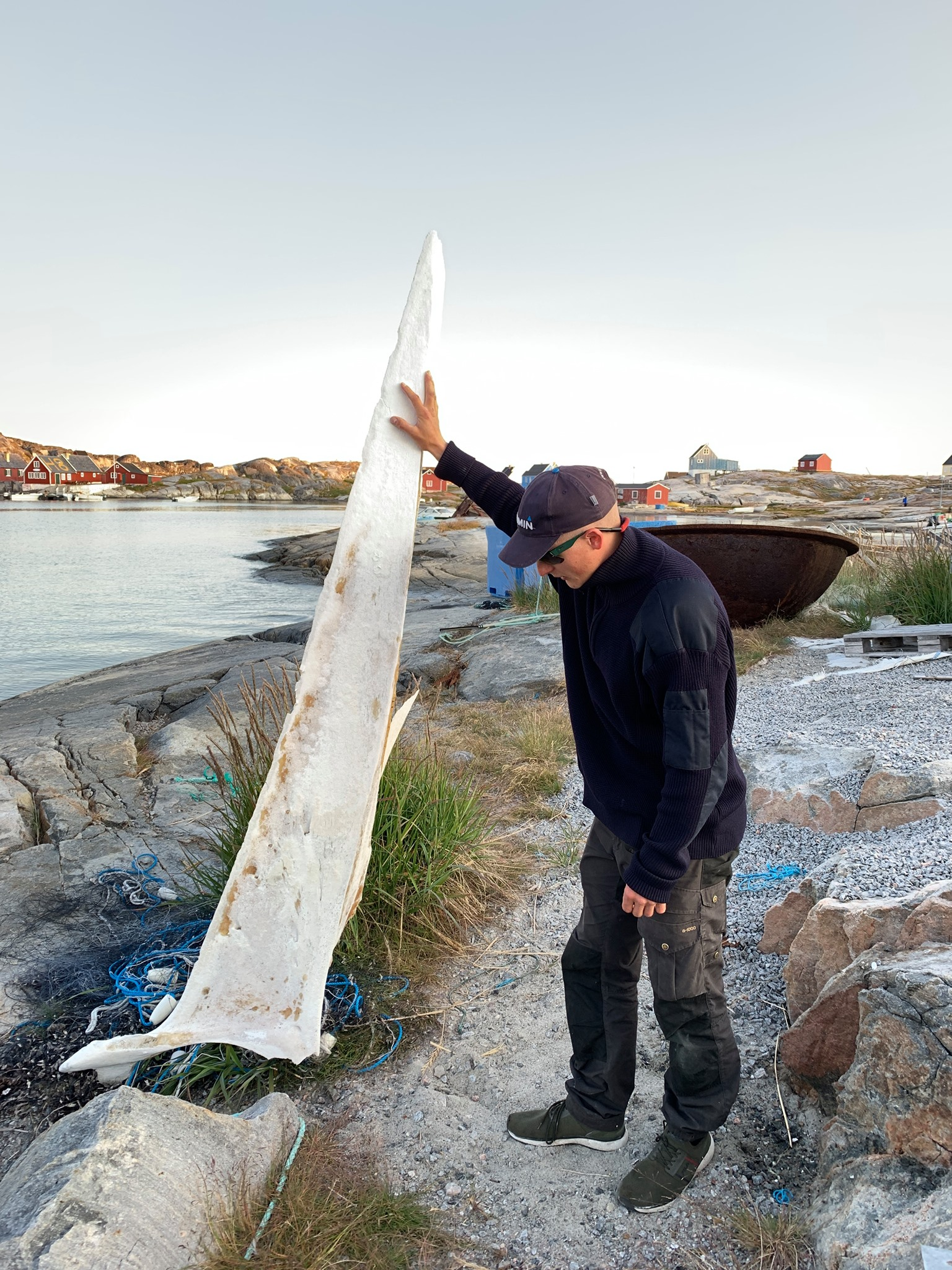 The first mate holding up a whale jawbone in Oqaatsut (Rodebaai).