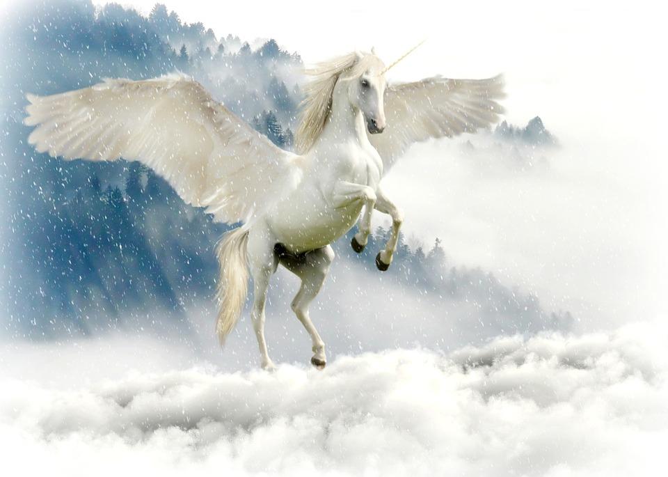 unicorn-2875349_960_720.jpg