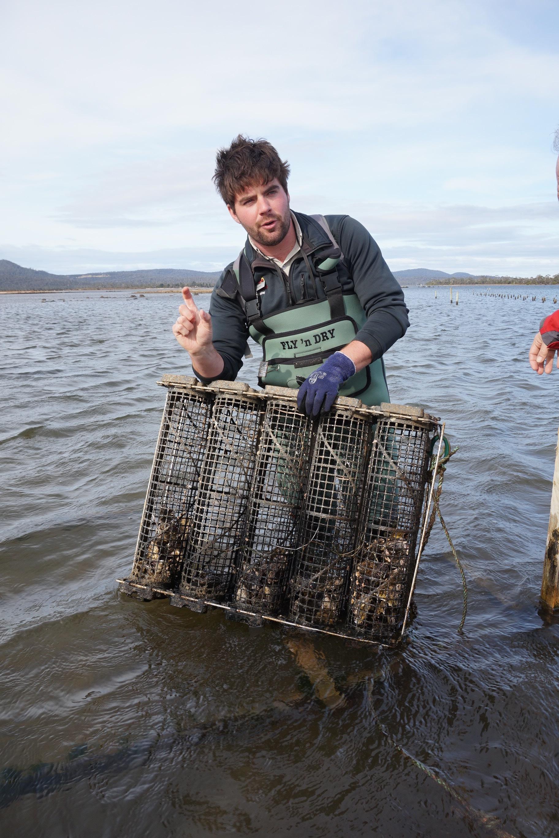fresh-oysters-1.jpg