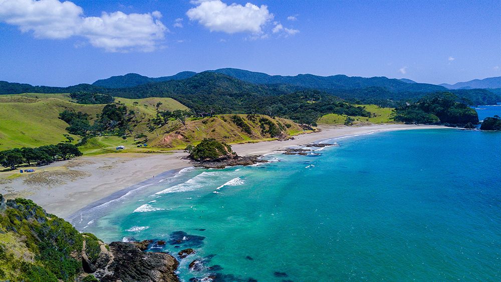 Beaches like Elliot Bay in Northland are just a few hours drive from Auckland City, perfect for weekend trips.