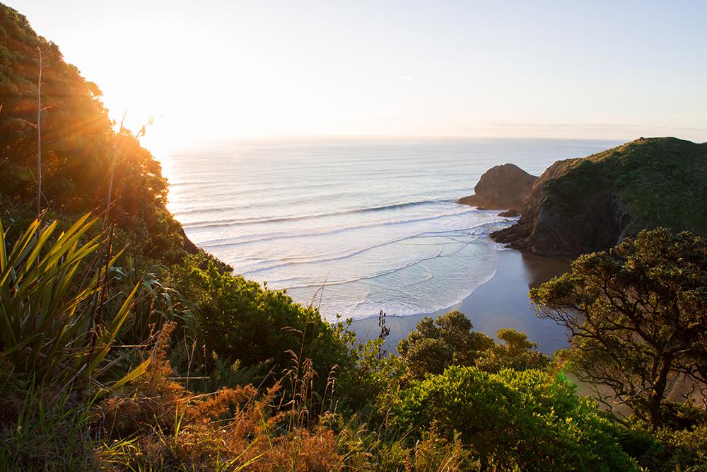 A beach close to Auckland City.