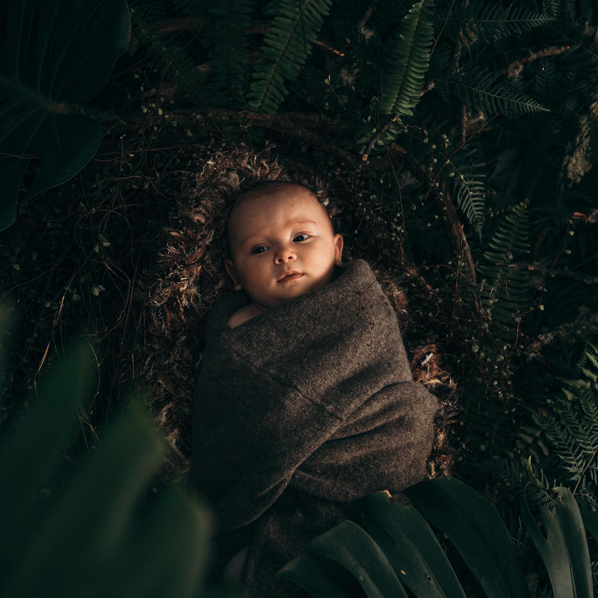 Wild Newborn Nature Photoshoot The Wildling Club.jpg