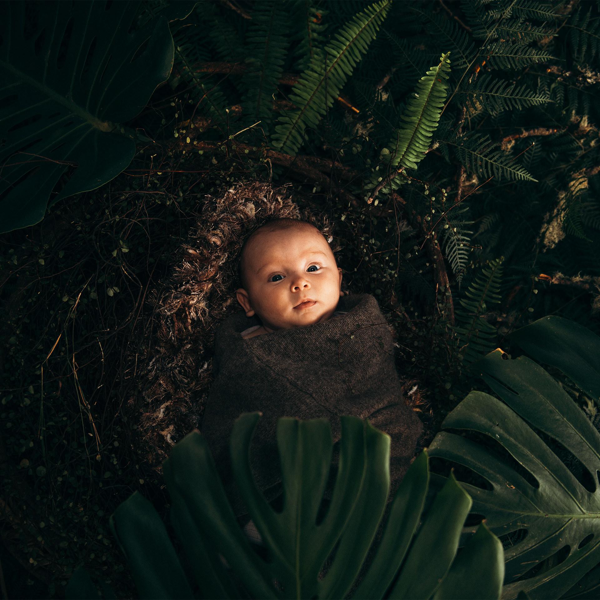 Wildling Newborn Nature Photoshoot The Wildling Club.jpg