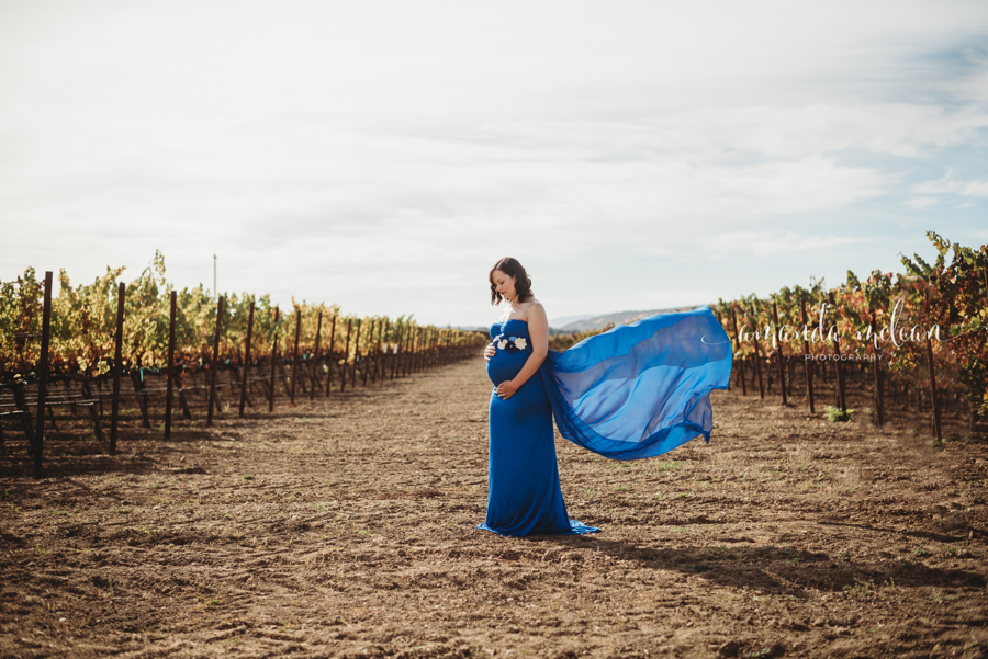 Maternity/Portrait Session$250 - 45-1.5 Hour Session10 Images on an online galleryUp to 2 locations2-3 dress changesFamily and Spouse welcomeAccess to my Maternity Gowns1 8x10 and 2 5x7 complimentary prints