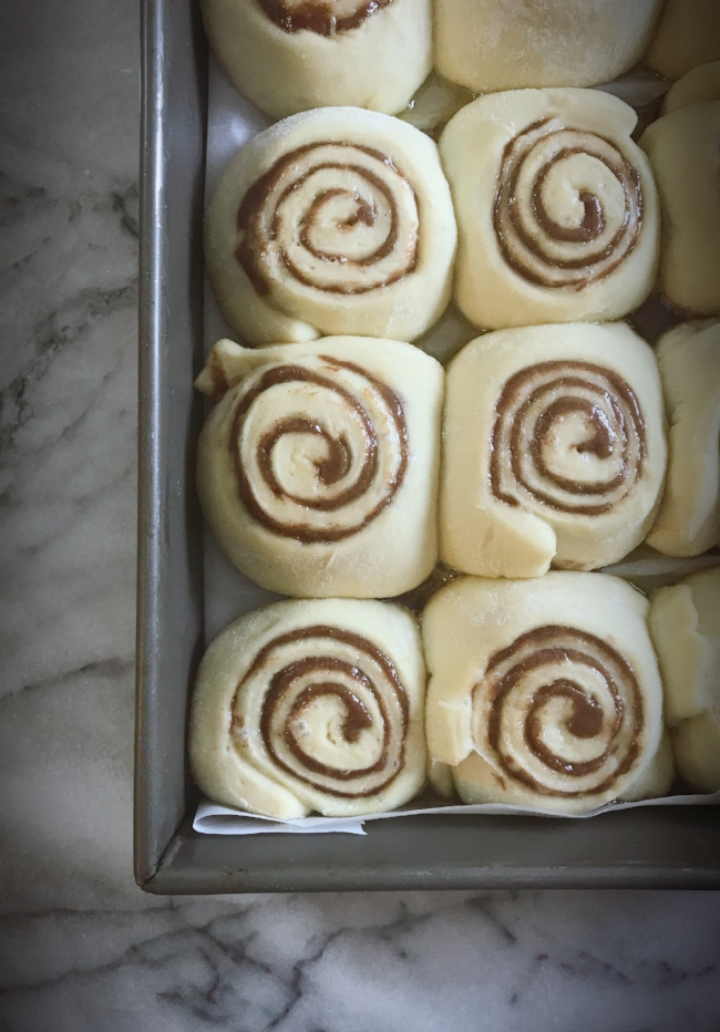 ready to bake cinnamon rolls.jpeg