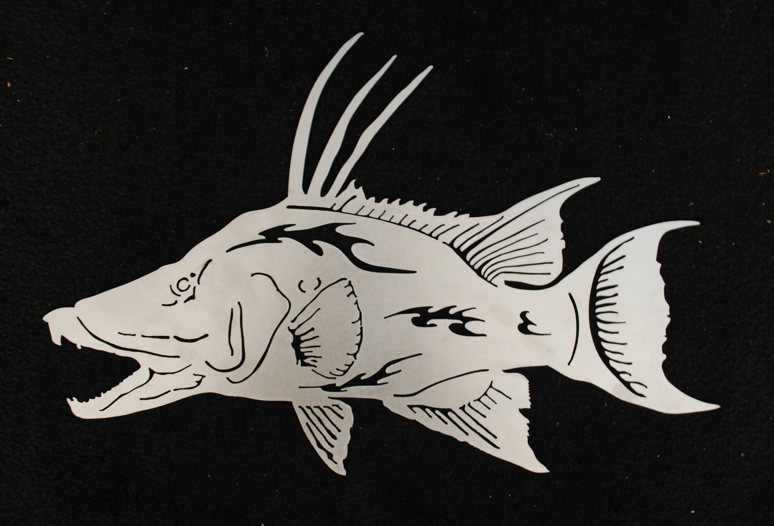 Copy of Hogfish