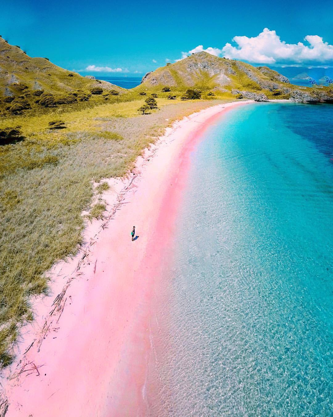 Pink beach of Komodo Island 🏖 Photo by  @hendrickhartono
