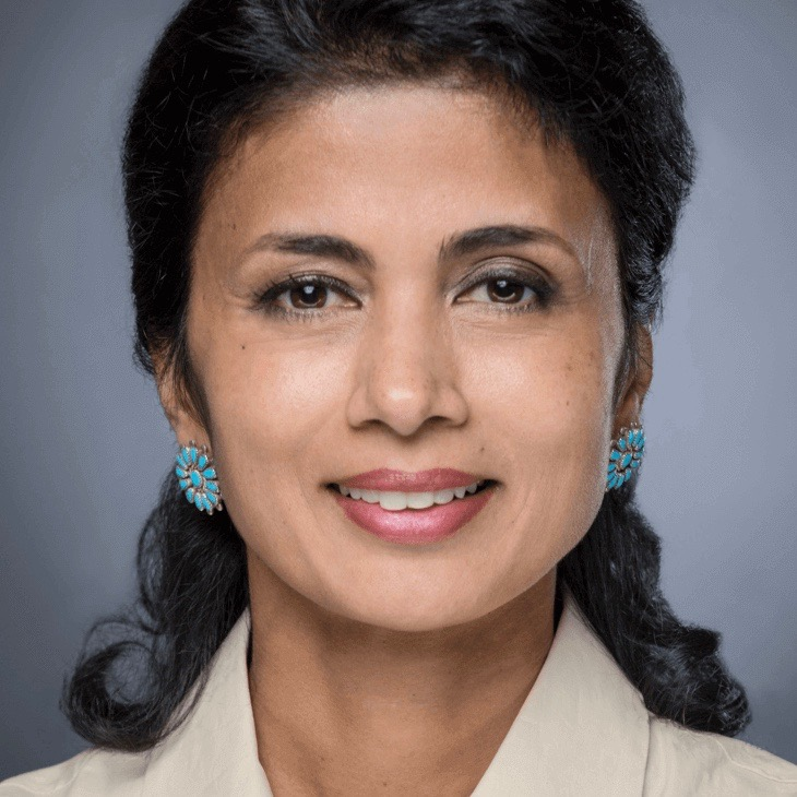 Nilanjana Bhowmik, Converge