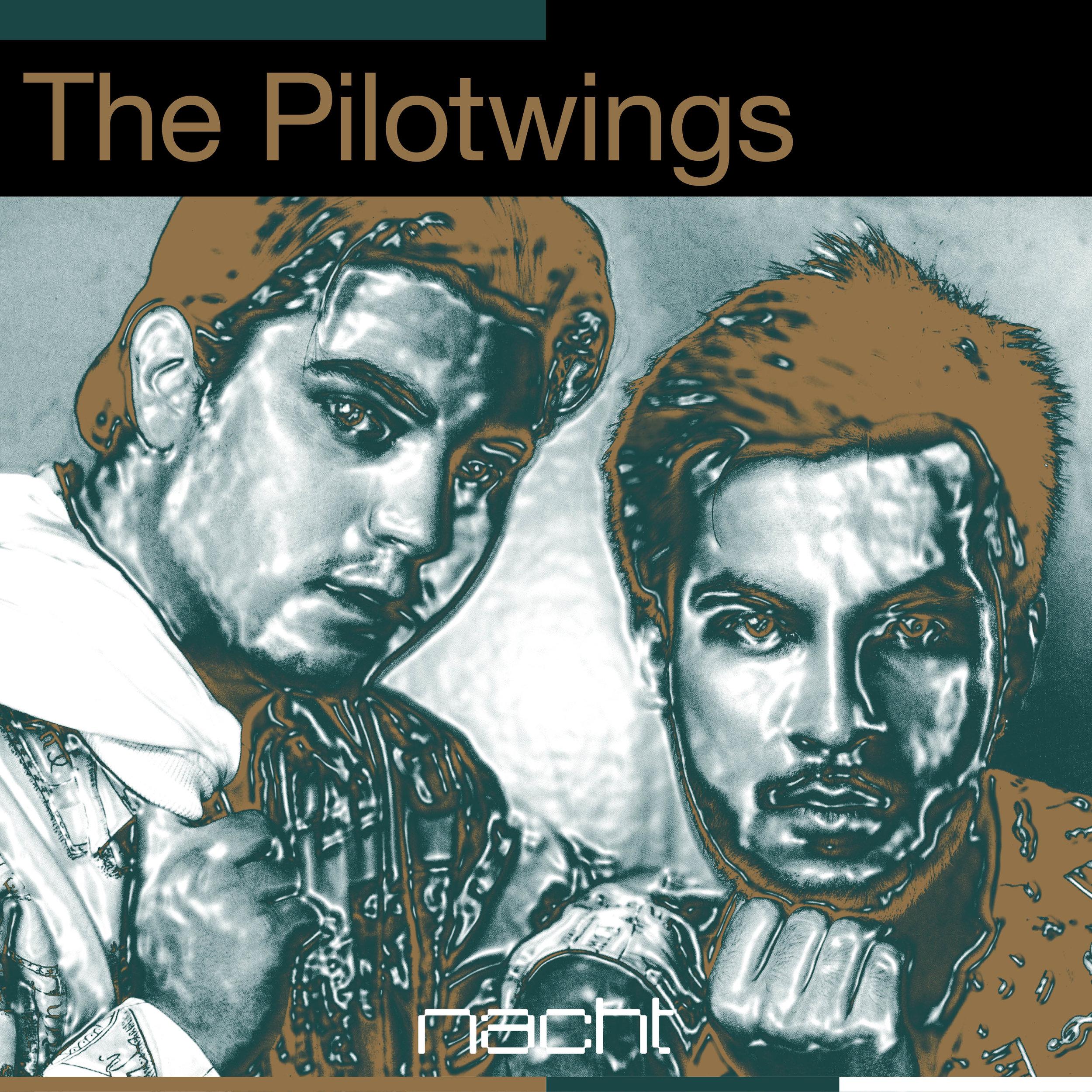 Pilotwings 1x1.jpg