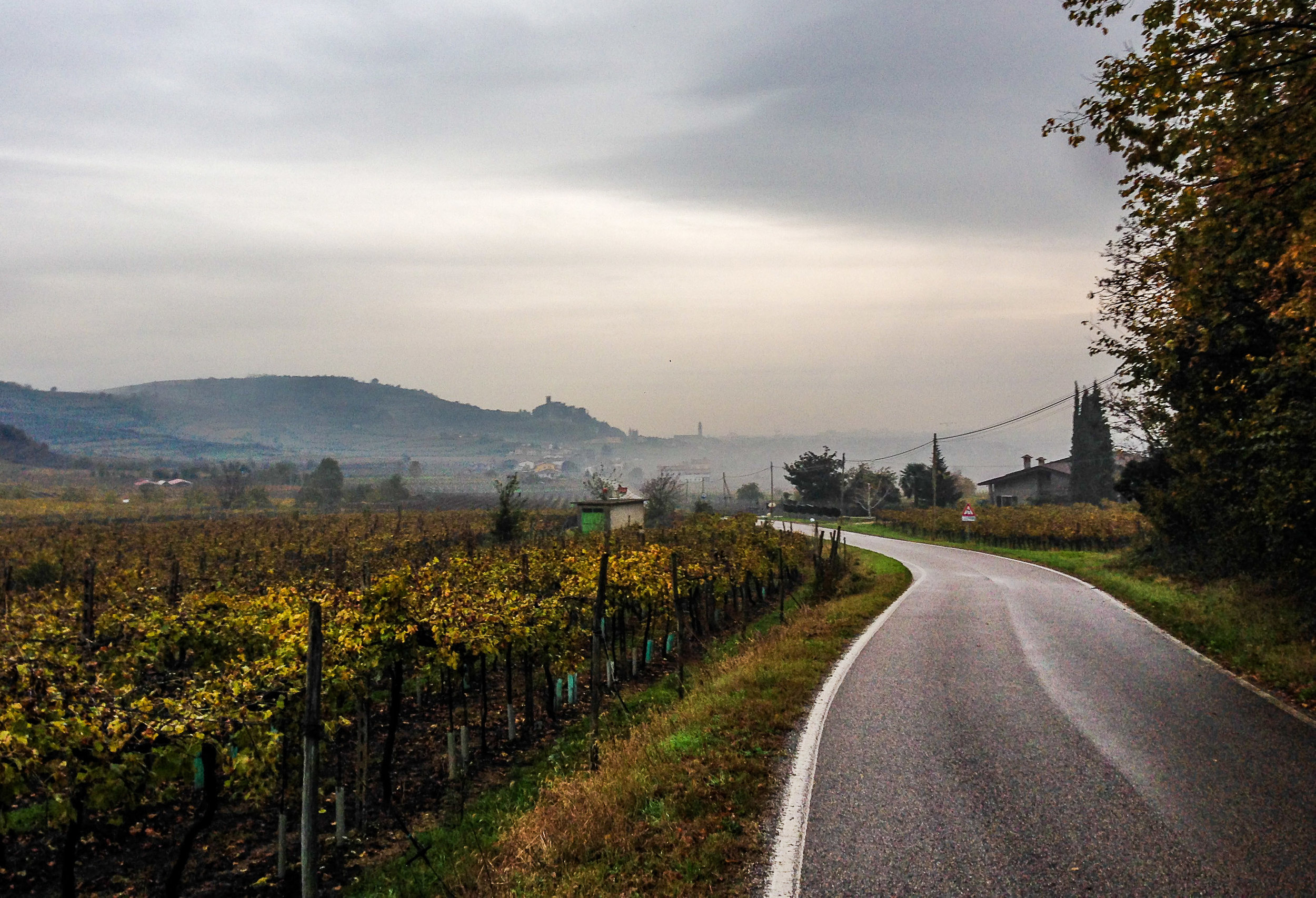 Road to Soave |  ©John Szabo (published by Jacqui Small)