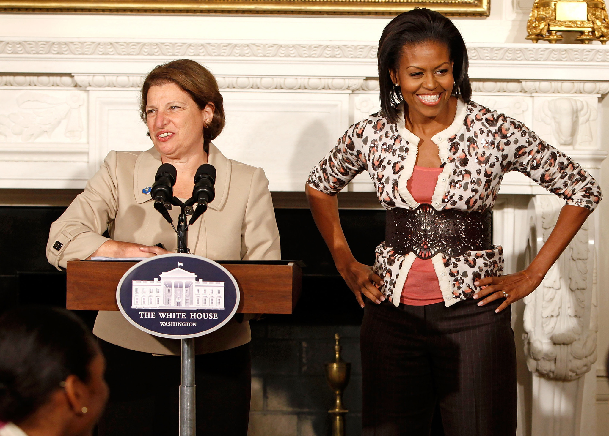 Meet Susan Sher. Michelle Obamas ex chief of staff and long time friend of the Obamas. -