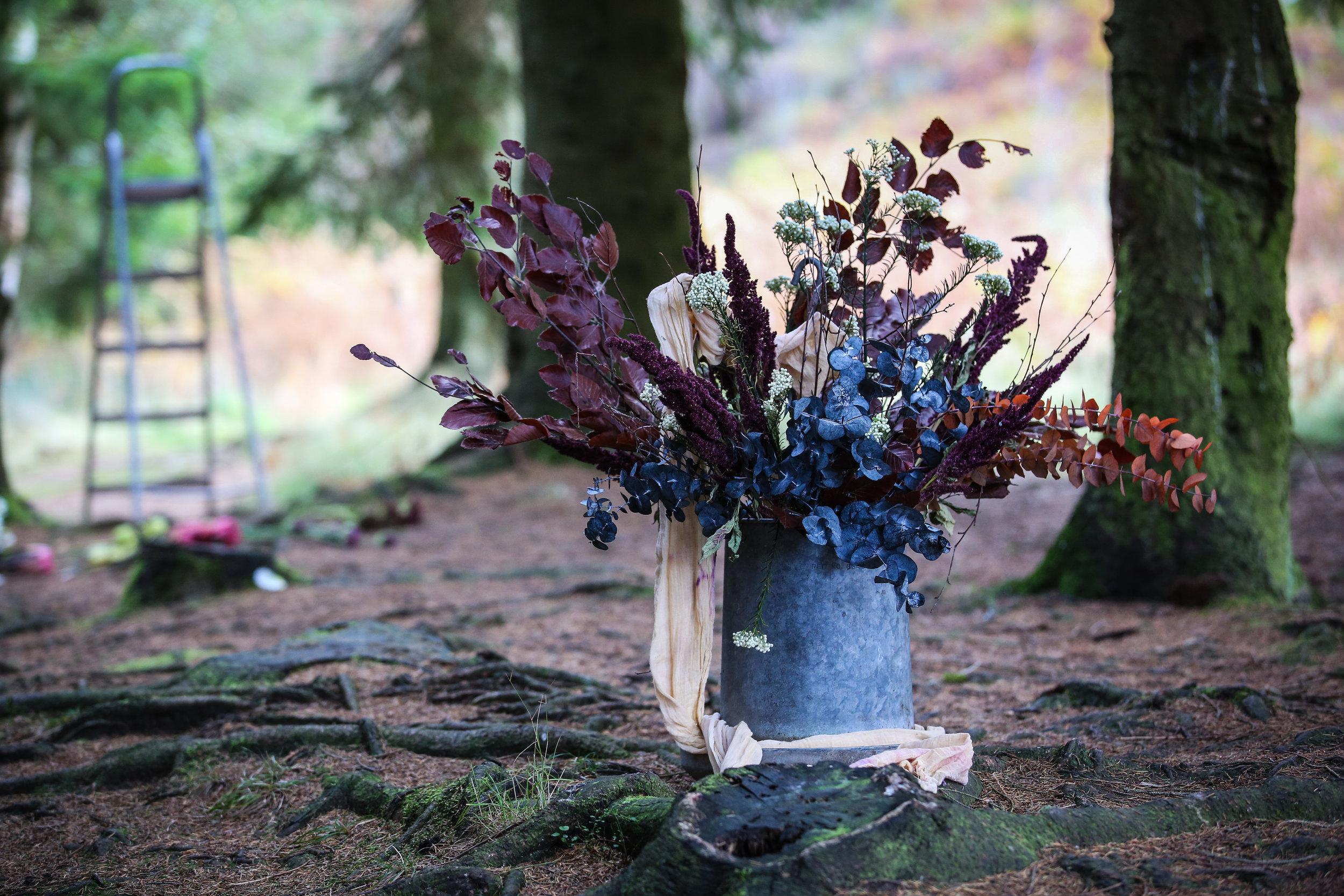 Autumn_Photoshoot_118.jpg