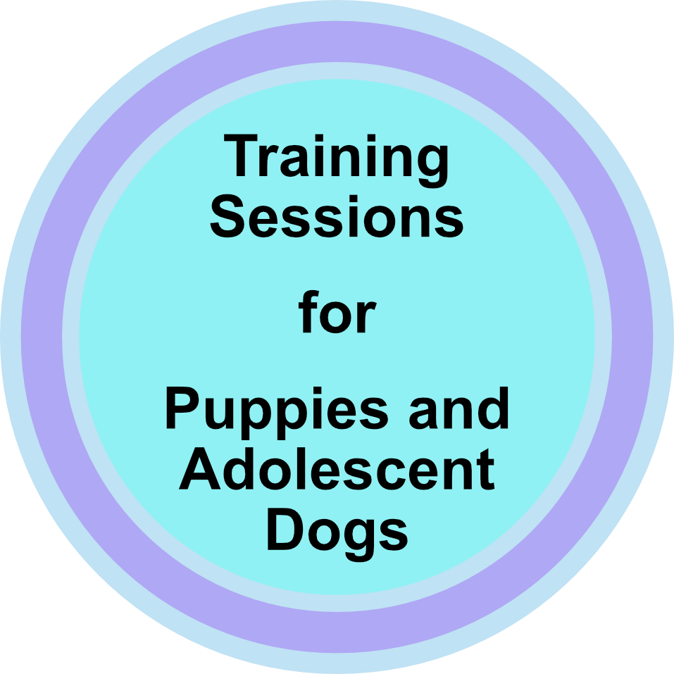 training-for-puppies-and-adolescent-dogs.png