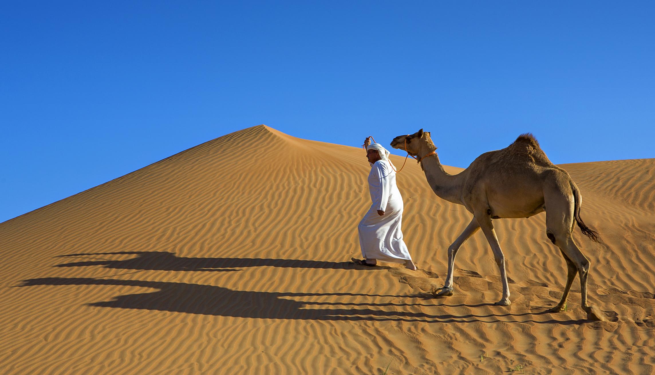 Property Management Dubai