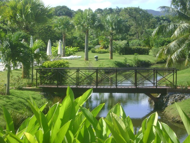 Bonita Village for Sale Las Terrenas gardens 1.jpeg