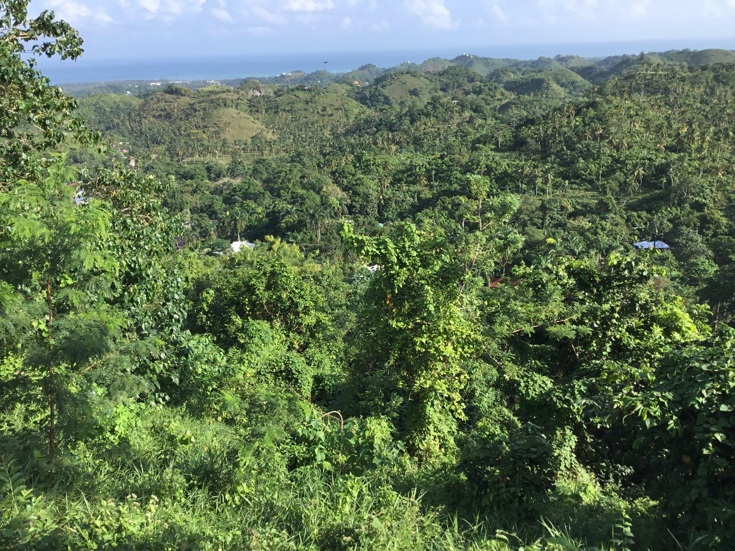 Land for Sale Las Terrenas Garen4.jpeg