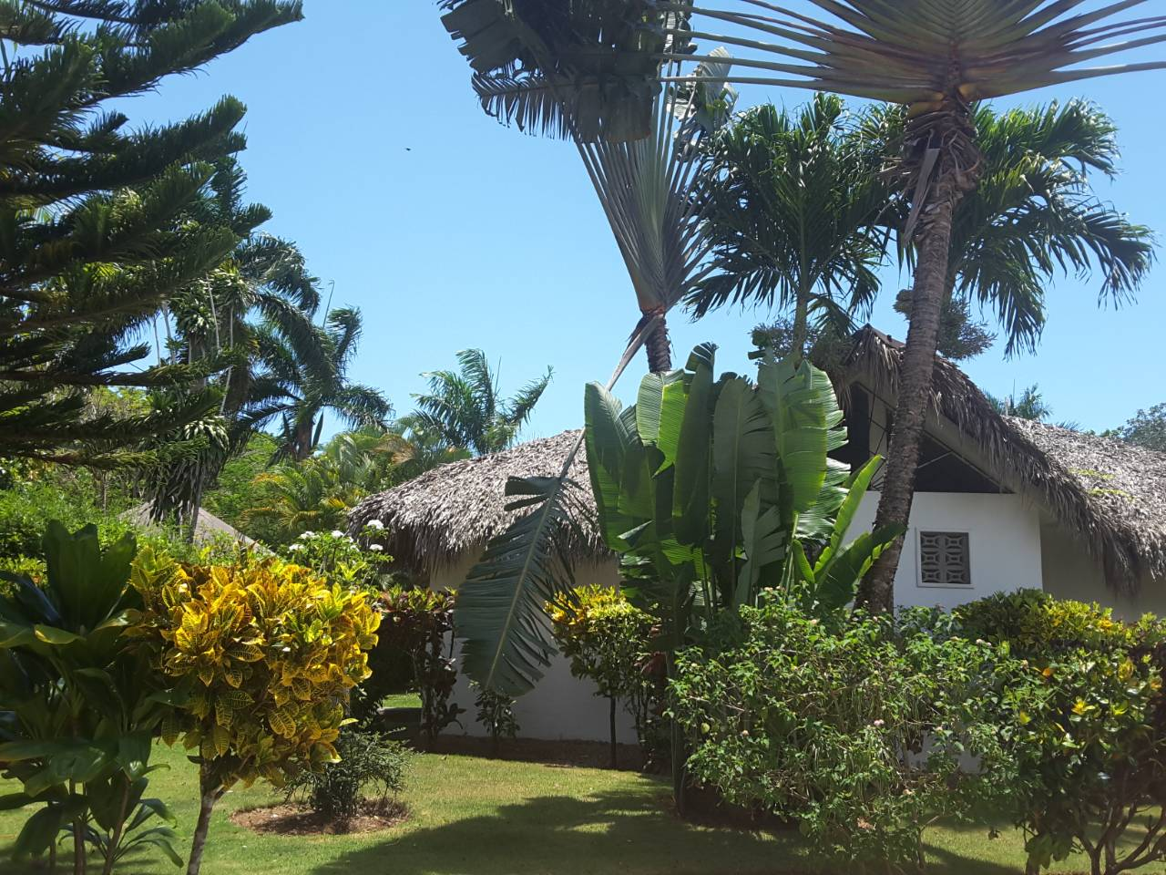 Villa for sale in Las Terrenas perfect for bed and breakfast9.jpeg