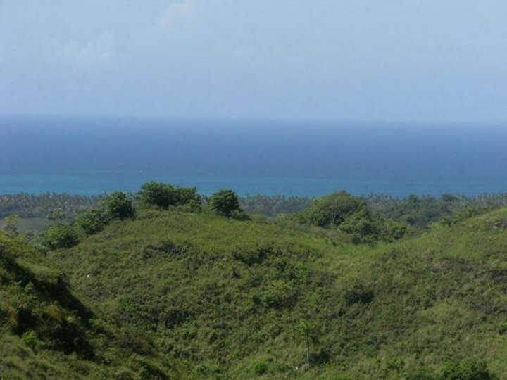 land for sale in abra grande las terrenas.jpg