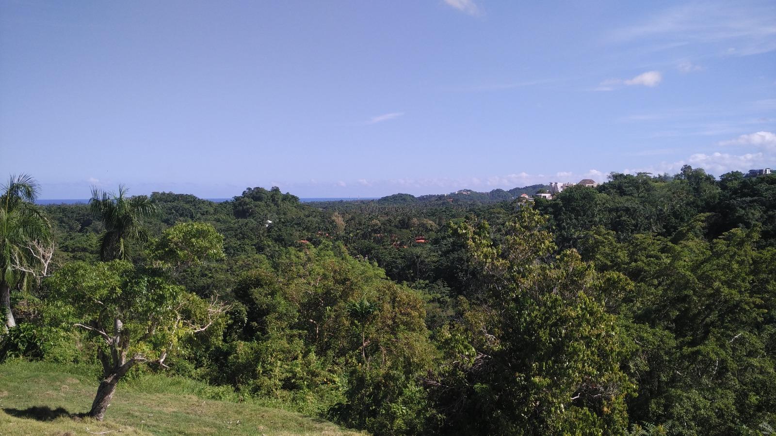 Hill for sale in Las Terrenas Dominican republic 4.jpeg
