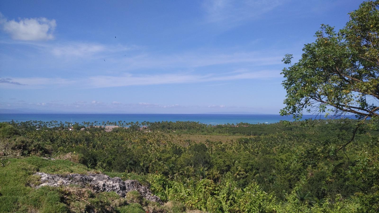 Hill for sale in Las Terrenas Dominican republic 13.jpeg