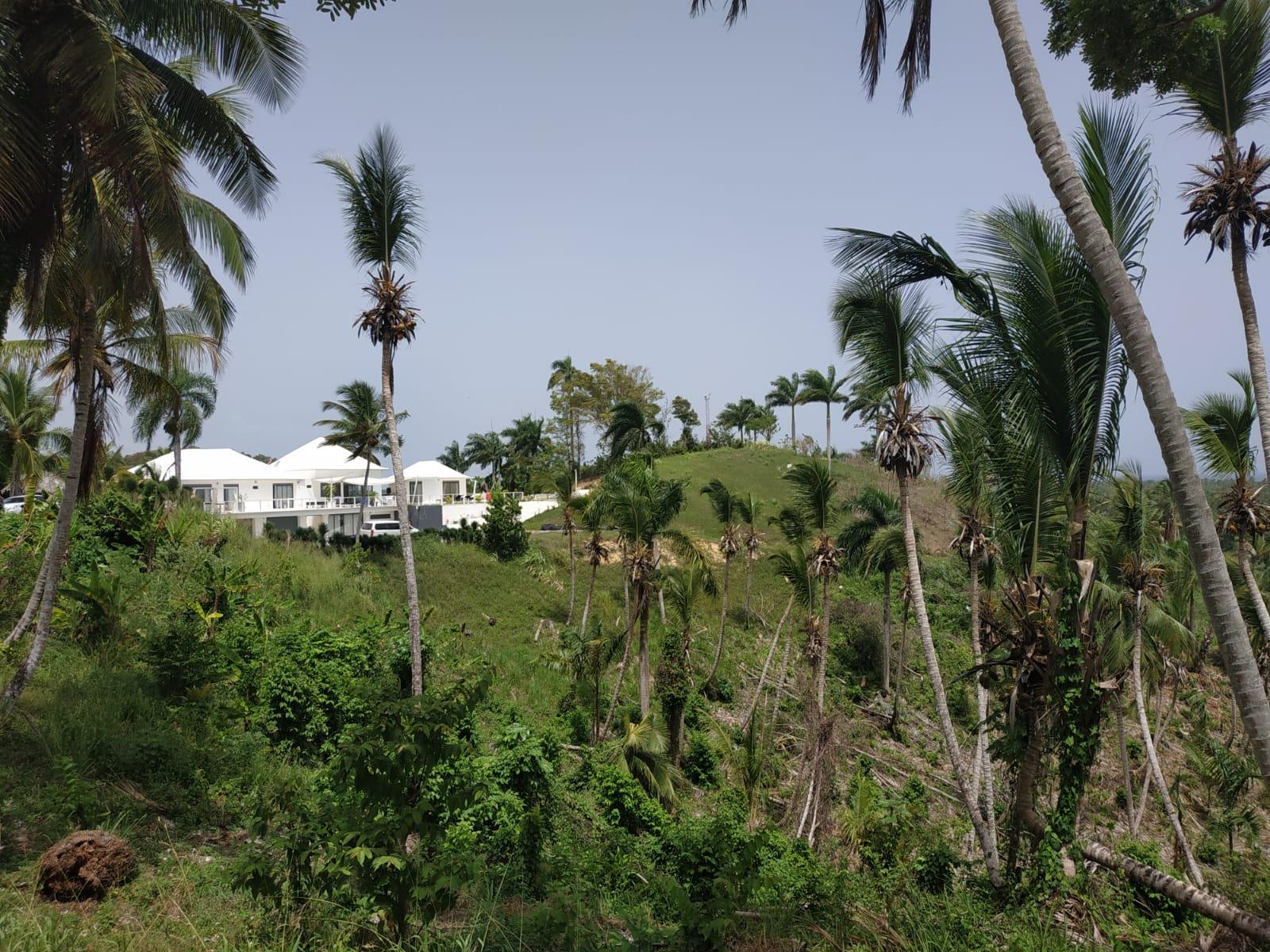 Land to build villa in Las Terrenas DR 2.jpeg