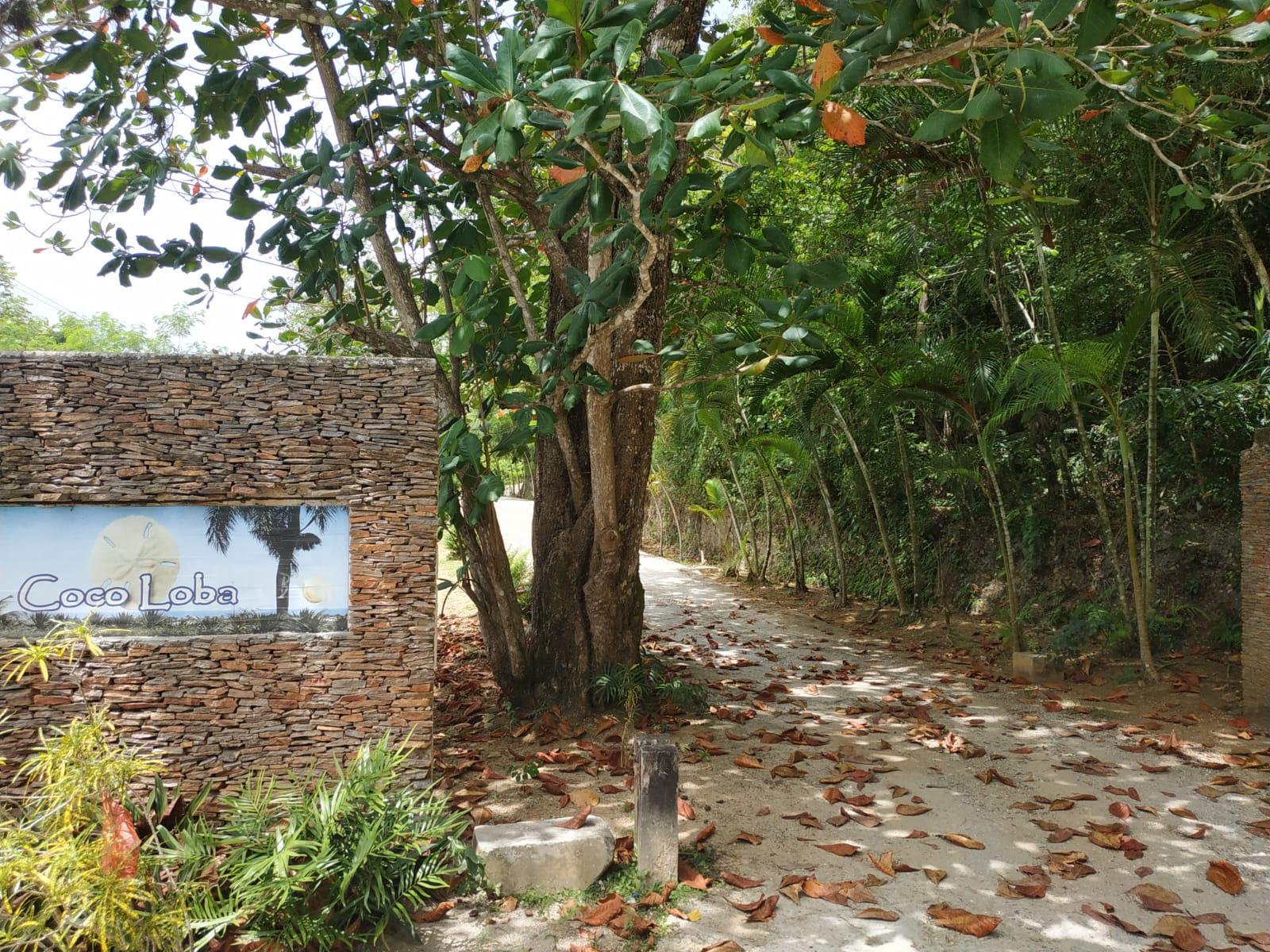 Land to build villa in Las Terrenas DR15.jpeg