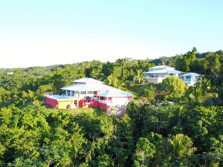 Hiiltop villa for sale ocean view las terrenas6.png