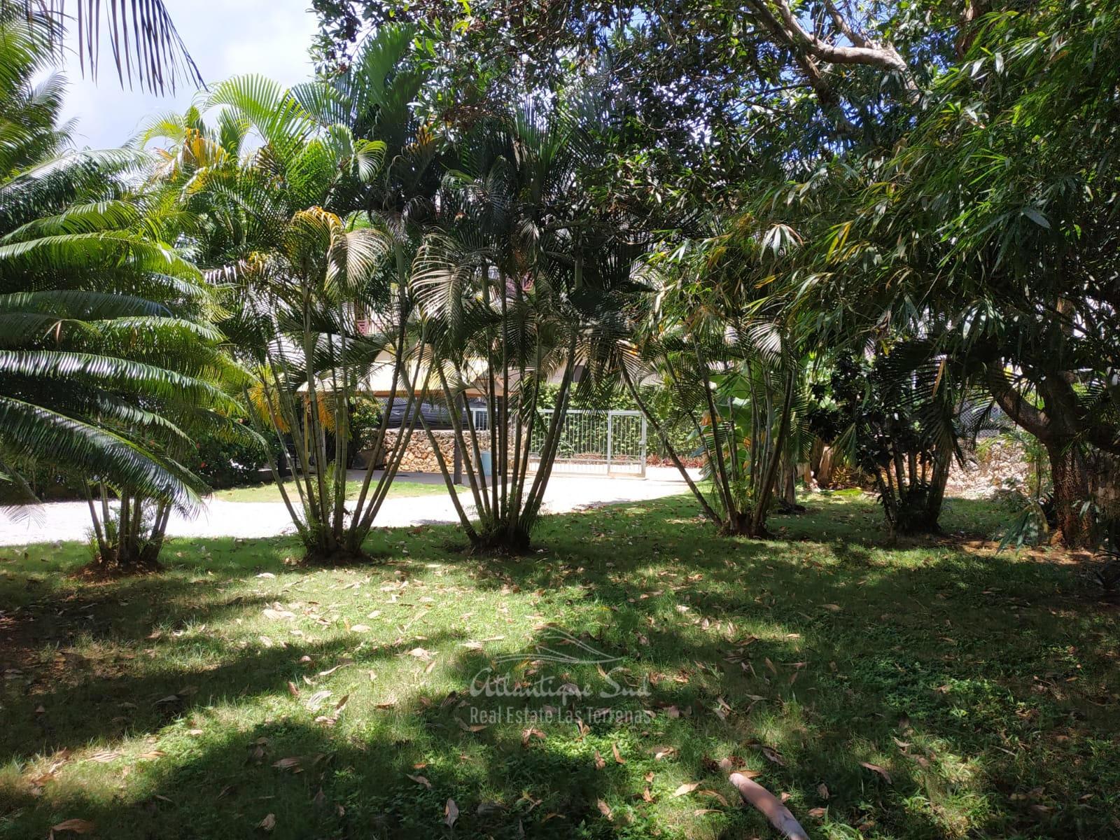 Villa Authentic Carribean Real Estate Las Terrenas Dominican Republic19.jpg