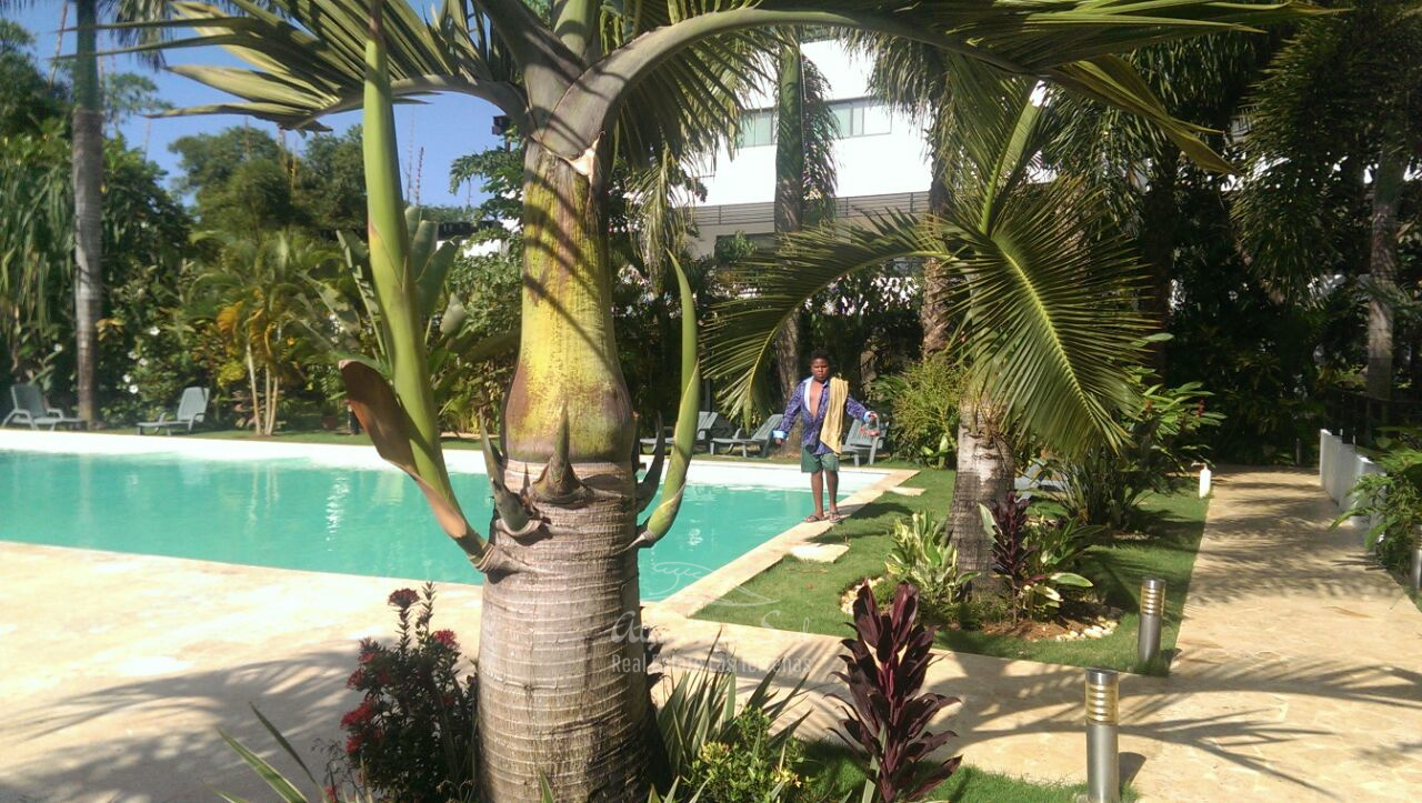 Comfortable Penthouse in calm and private community real estate Las Terrenas Dominican Republic3.jpeg