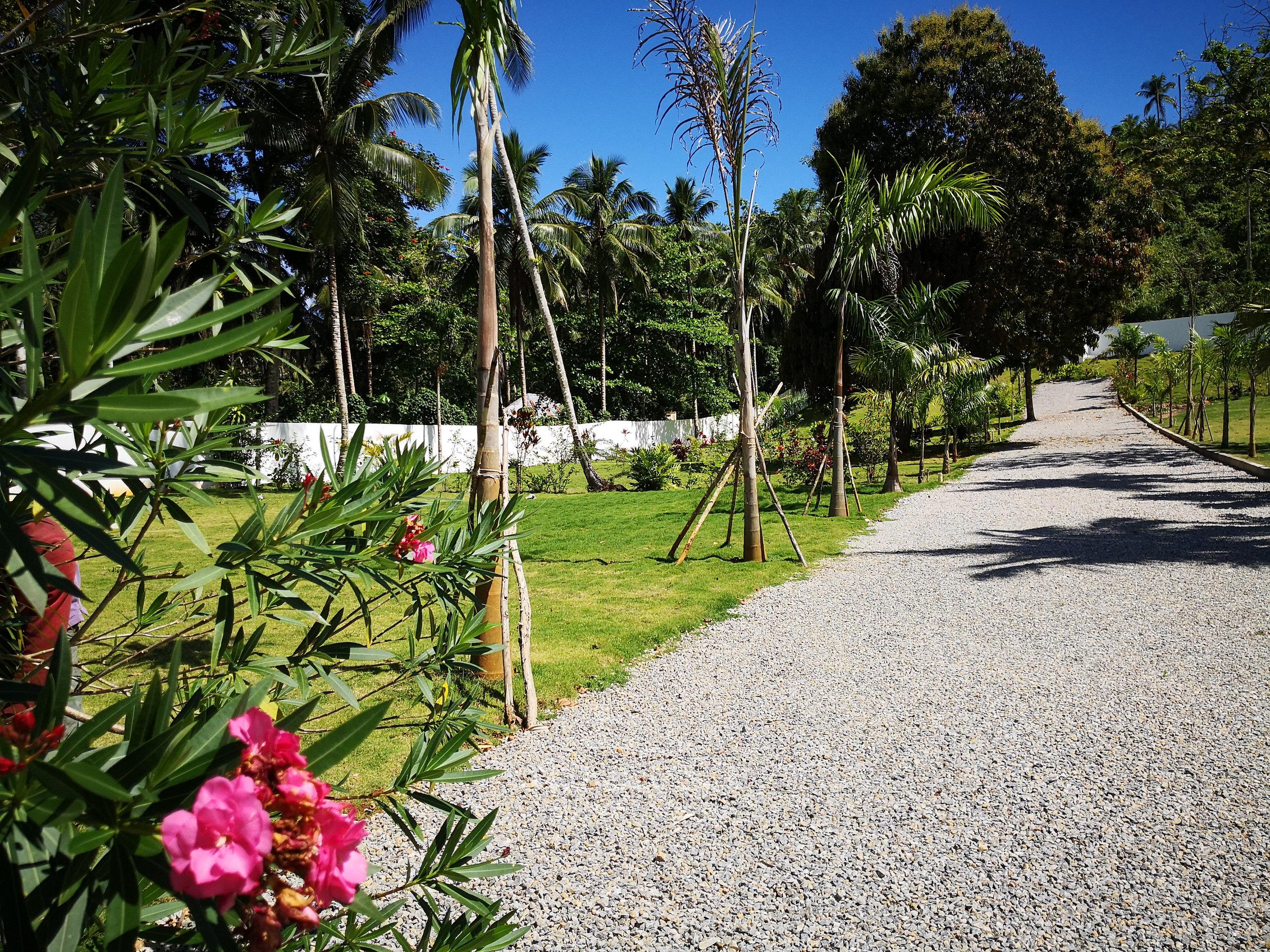Ready to build lands for sale in Las Terrenas Real Estate Dominican Republic4.jpg