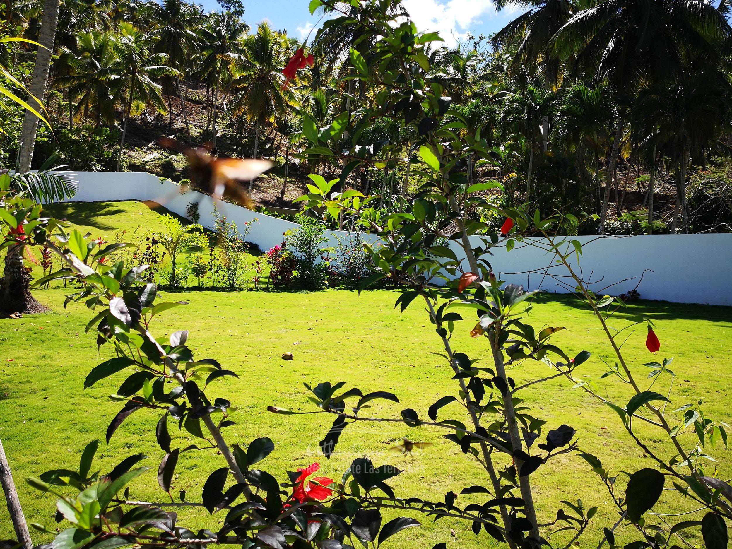 Ready to build lands for sale in Las Terrenas Real Estate Dominican Republic7.jpg